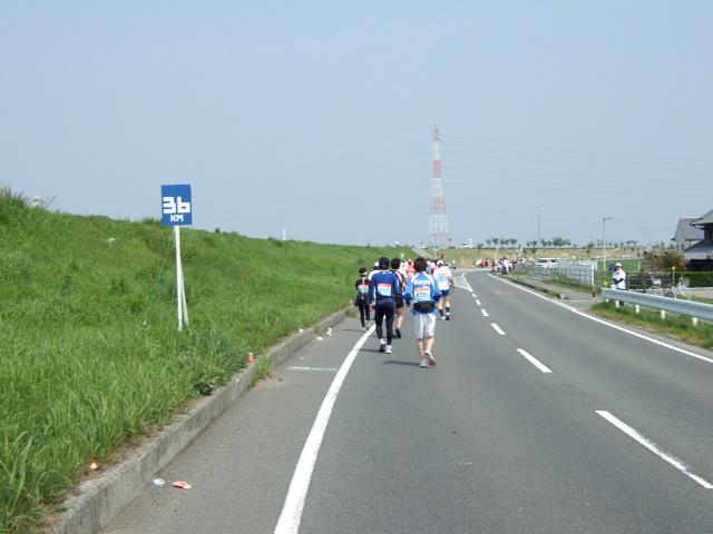 吉野川南岸コース 36km.JPG