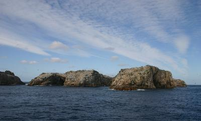 Bounty Islands.jpg