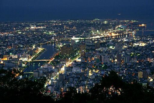 徳島市夜景 眉山山頂.jpg