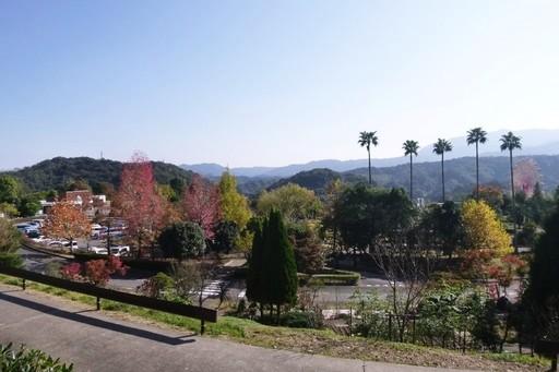 とくしま植物園 渋野町 徳島.JPG