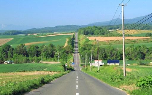 ジェットコースターの道 美瑛 北海道.jpg