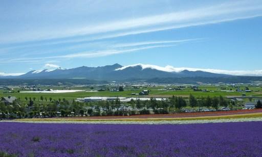 ラベンダー畑と富良野 ファーム富田 富良野 北海道.jpg