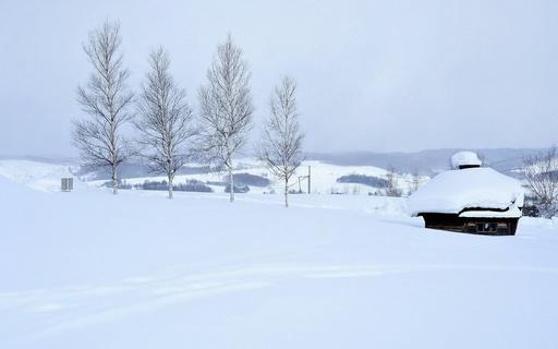 冬景色 上富良野 北海道.jpg