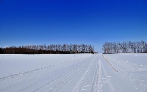冬景色 雪道 更別村 北海道.jpg