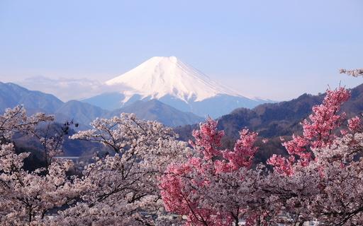 富士山 岩殿山(いわどのさん) 山梨.jpg