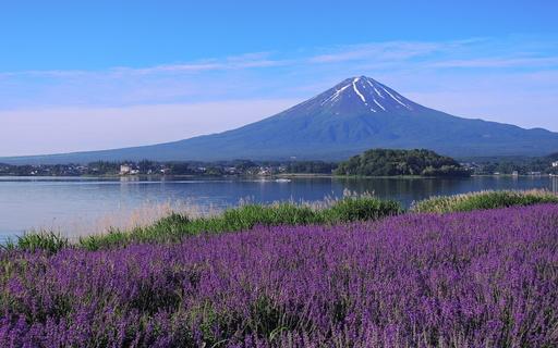 富士山 河口湖 山梨.jpg