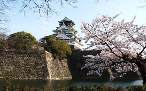 桜 大阪城公園 大阪.jpg