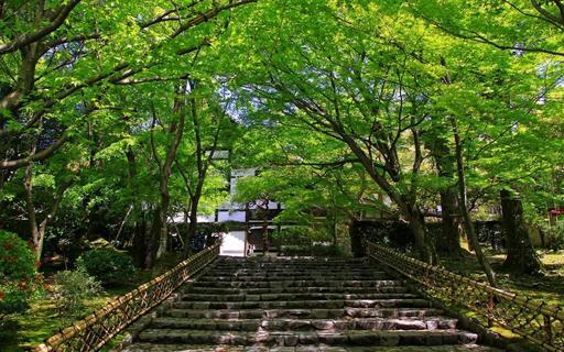 竜安寺 京都.jpg