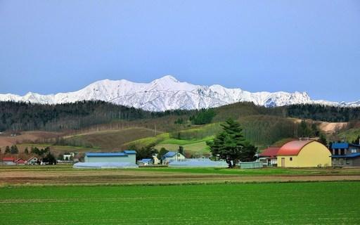 里山の春 富良野 北海道.jpg