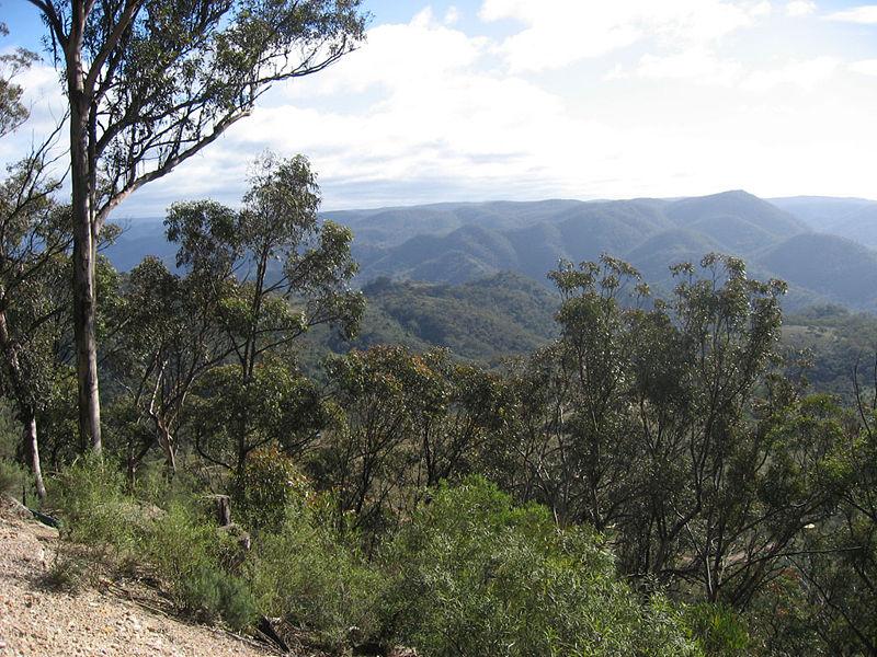Nattai National Park.jpg