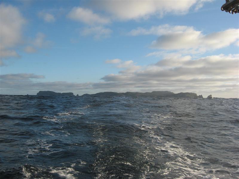 Snares Islands.jpg